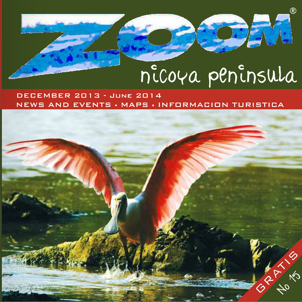Zoom Magazine No. 15 is now available online!
